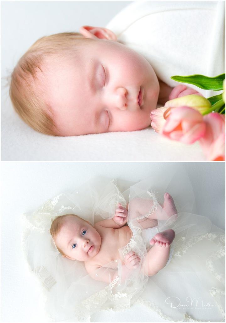 giddings-newborn-photographer1055